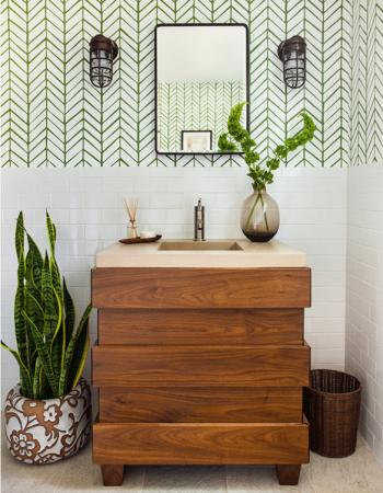 Sansevieria en maceta en el suelo del baño_por Beth Kooby Design via Houzz