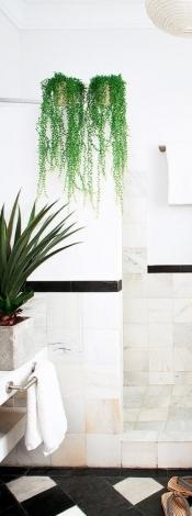 Plantas en el servicio sobre murete_via Revista AD con foto de María Primo
